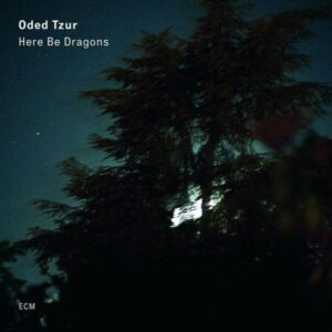 Here Be Dragons (Vinyl) - Oded Tzur