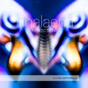 Reflections - Phalaena
