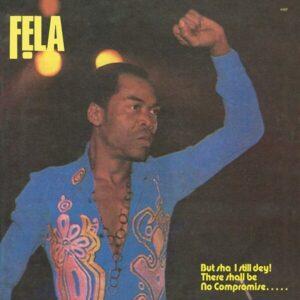 Army Arrangement (Vinyl) - Fela Kuti