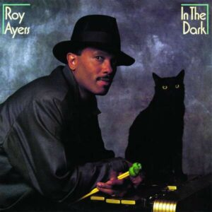 In The Dark - Roy Ayers