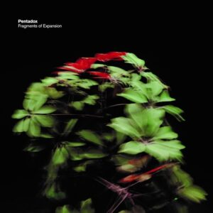 Fragments Of Expansion - Pentadox