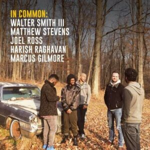 In Common (Vinyl) - In Common