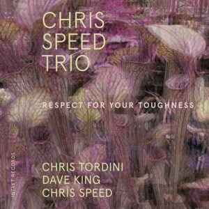 Respect for Your Toughness - Chris Speed Trio
