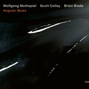 Angular Blues (Vinyl) - Wolfgang Muthspiel
