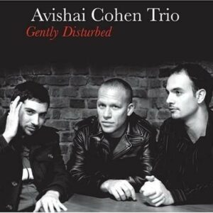 Gently Disturbed - Avishai Cohen Trio