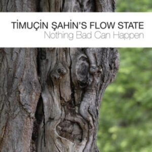 Nothing Bad Can Happen - Timuçin Sahin's Flow State