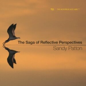 The Saga Of Reflective Perspectives - Sandy Patton