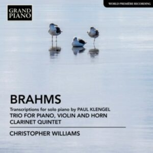 Brahms: Trio For Piano, Violin And Horn; Clarinet Quintet (in transcription for piano) - Christopher Williams