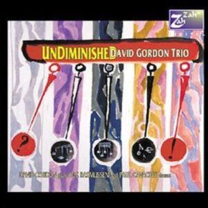 Undiminished - David Gordon Trio