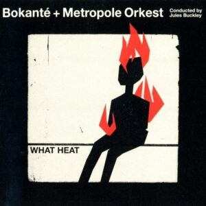 What Heat - Bokant' & Metropole Orkest