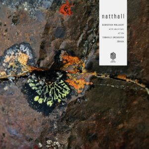 Sebastian Mullaert: Natthall (Vinyl) - Julia Becker