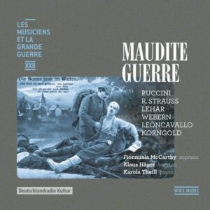 Maudite guerre (Les musiciens et la Grande Guerre, Vol. 22) - Fionnuala McCarthy