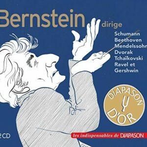 Leonard Bernstein dirige Schumann, Beethoven, Mendelssohn, Dvorák, Tchaikovski, Ravel et Gershwin