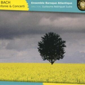 Bach J.S.: Sinfonie & Concerti