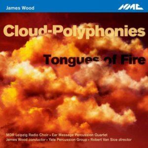 James Wood : Œuvres pour ensemble de percussions. Van Sice, Wood.