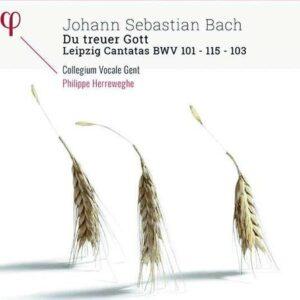 Bach: Kantaten BWV 101,103,115 - Philippe Herreweghe