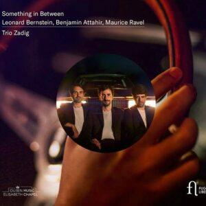 Something In Between - Trio Zadig
