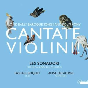 Cantate Violini!, Florid Early Baroque Songs And Polyphony - Anne Delafosse