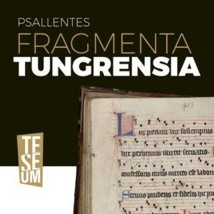 Fragmenta Tungrensia - Psallentes & Hendrik Vanden Abeele