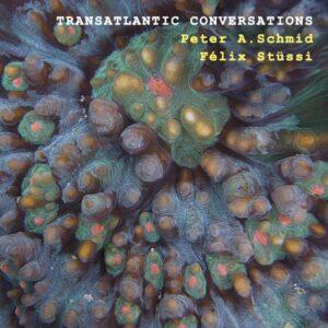 Peter A.Schmid, Félix Stüssi : Transatlantic Conversations