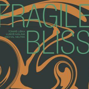 Tomas Liska, Lubos Malina, Michal Nejtek : Fragile Bliss.