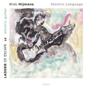 Electric Guitar - Wiek Hijmans