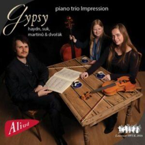 Suk / Martinu / Dvorak / Haydn: Gypsy - Piano Trio Impression