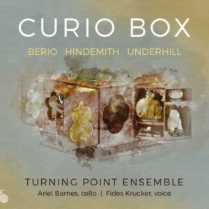 Curio Box - Ariel Barnes
