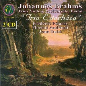 Johannes Brahms : Trios, opp. 8, 87, 101 & Op. posth.