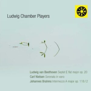 Beethoven, Nielsen, Brahms : Musique de chambre. Ludwig Chamber Players.