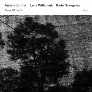 Trees Of Light - Anders Jormin