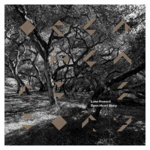 Open Heart Story (Vinyl) - Luke Howard