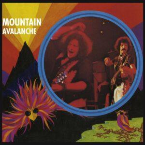 Avalanche - Mountain