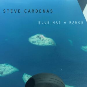 Blues Has A Range - Steve Cardenas