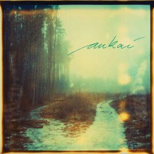 Aukai (Vinyl) - Aukai