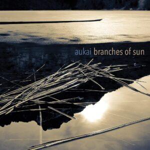 Branches Of Sun (Vinyl) - Aukai